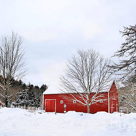 Winter In New England by Diann Fisher