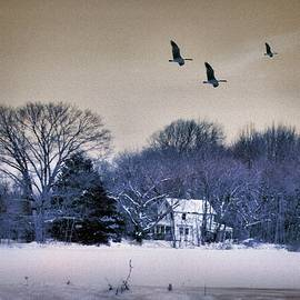 Winter In The Country by Natalie Holland