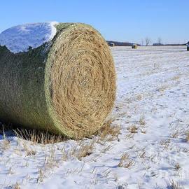 Winter In The Heartland by Steve Gass