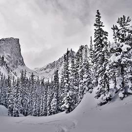 Winter in the Rockies by Larry Kniskern