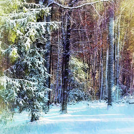 Winter In The Woods by Tricia Marchlik
