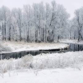 Winter In Wisconsin by Kay Novy