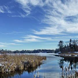 Winter Lake by Lyuba Filatova