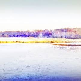 Winter Landscape #7 by Slawek Aniol