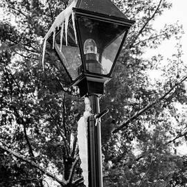 Winter Lantern by Ruth H Curtis