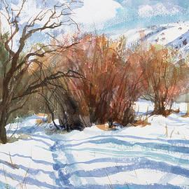 Winter Light by Steve Henderson