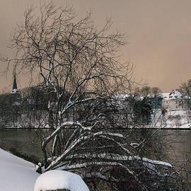 Winter Light by Turid Bjornsen