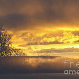 Winter Mist by Alana Ranney