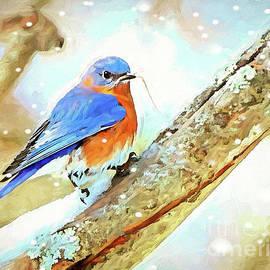 Winter Nesting by Tina LeCour