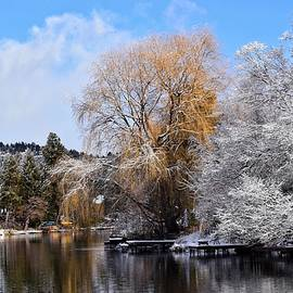 Winter on the Deschutes River by Dana Hardy