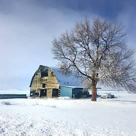 Winter on the Farm by Jerry Abbott