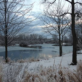 Winter Ponds by Barbara Ebeling