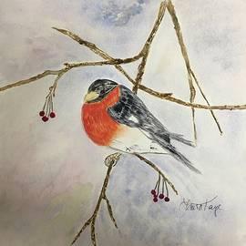 Winter Robin by Laura Kisaoglu