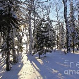 Winter Scene, Minnesota by Ann Brown
