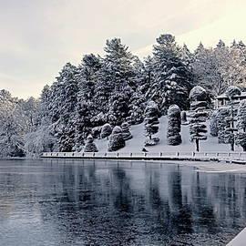 Winter Scenery by Lyuba Filatova