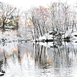 Winter Simplicity Central Park IV by Regina Geoghan