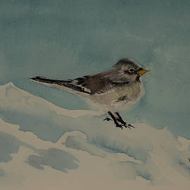 Winter Sparrow by Laurie Sequana Stolmaker