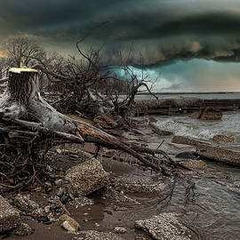 Winter Storm Debris   by Scott Olsen