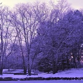 Winter Sunset by Barbara Ebeling