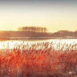 Winter Sunset by Slawek Aniol