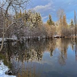Winter Tree Reflection by Jerry Abbott