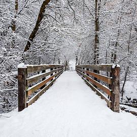 Winter Walk by Darlene Smith