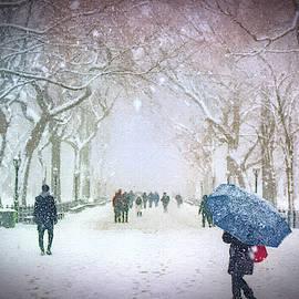 Winter Walk in Central Park - DWP3772616 by Dean Wittle