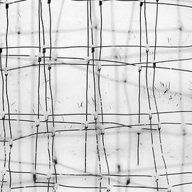 Winter Weave    Abstract Wire Fence in Winter Snow by Nancy Jacobson