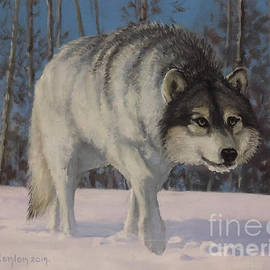 Winter Wolf by Sean Conlon