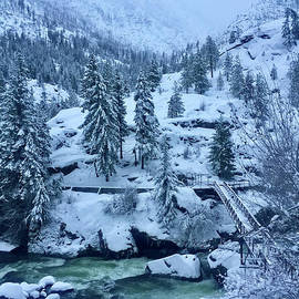 Winter Wonderland by Skye Winter