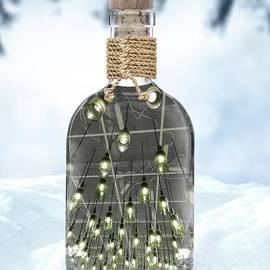 Winters Elixir  by Alexandra Vusir