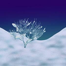 Winter's Scorn by Paul Wear