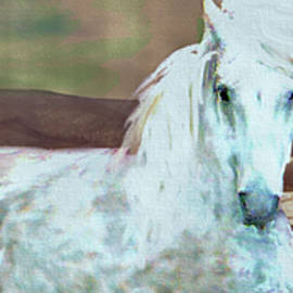 Wintertime With The Stallion by Patricia Keller