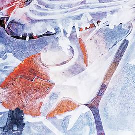 Wintery by Sue Capuano