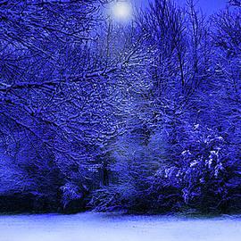 Wintry Moonlight