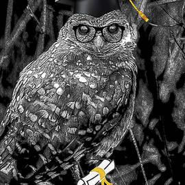 Wise Ol' Owl by Debra Kewley