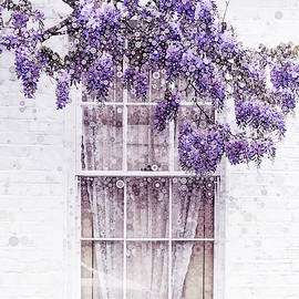 Wisteria Window by Susan Maxwell Schmidt