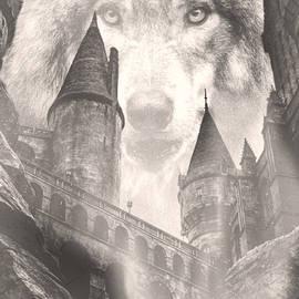 Wolf Castle by KaFra Art