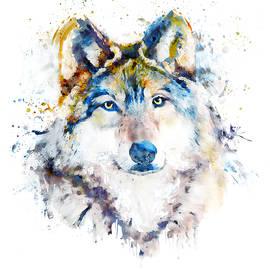 Wolf Face Watercolor Portrait by Marian Voicu