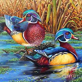 Wood Ducks by Pechez Sepehri