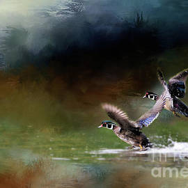 Wood Ducks Take Flight by Kathy Kelly
