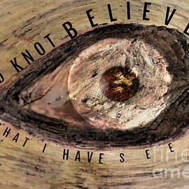 Wood Knot Believe What I Have Seen by Diann Fisher