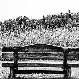 Wooden Bench by Omid Gohardani