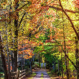 Wooden Fences II by Debra and Dave Vanderlaan