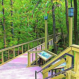 Woodlawn Beach State Park Hamburg New York Boardwalk Abstract Expressionist Effect by Rose Santuci-Sofranko