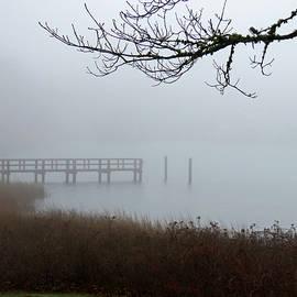 Wychmere Harbor Fog by Dianne Cowen