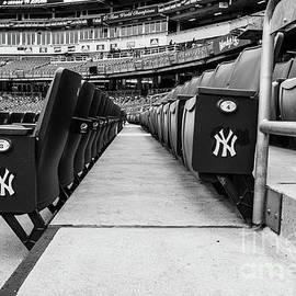 Yankee Seating Chrome by Len Tauro