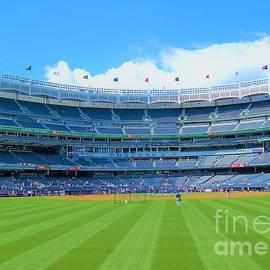 Yankee Stadium by Suzanne Wilkinson