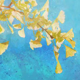 Yellow Ginkgo Leaves On Blue by Ann Powell