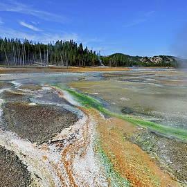 Yellowstone Colors by Lyuba Filatova